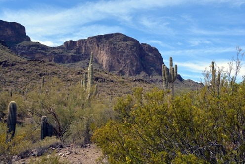 tucson-southern-arizona